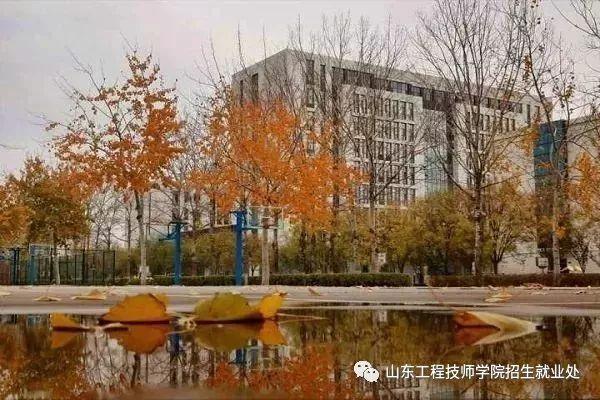 山东工程技师学院2019年招生简章